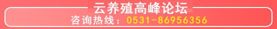 5a2241750afce副本.jpg