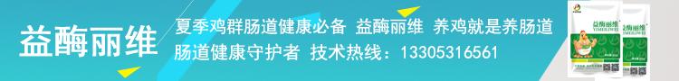 yimeilimei02副本.jpg